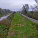 Pista de biciclete de la Timișoara până în Serbia